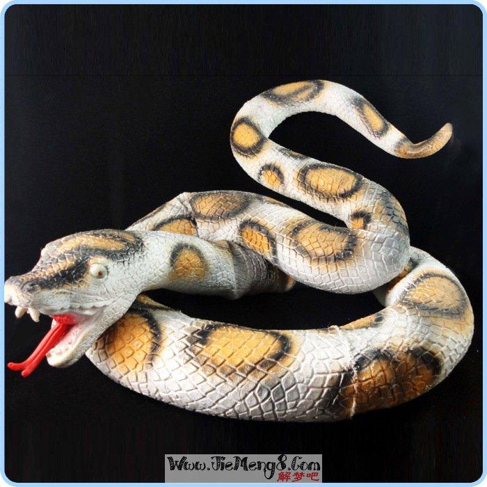 梦见黑蛇说话