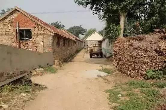 中国农村老头考�:`�9��_一位农村老人去世了,留下的遗产却震惊全中国!