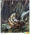 南京挖出140米大蟒蛇,140岁大蟒蛇精