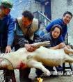 梦见杀猪 周公解梦梦到别人杀猪是什么意思