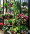 鲜花店富有诗意的名字的取名技巧